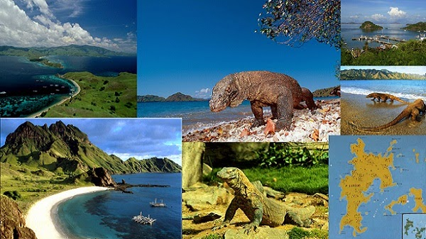 Traveling-to-Komodo-Island