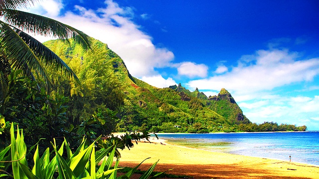 Kauai beach attraction is best Hawaii holiday destination