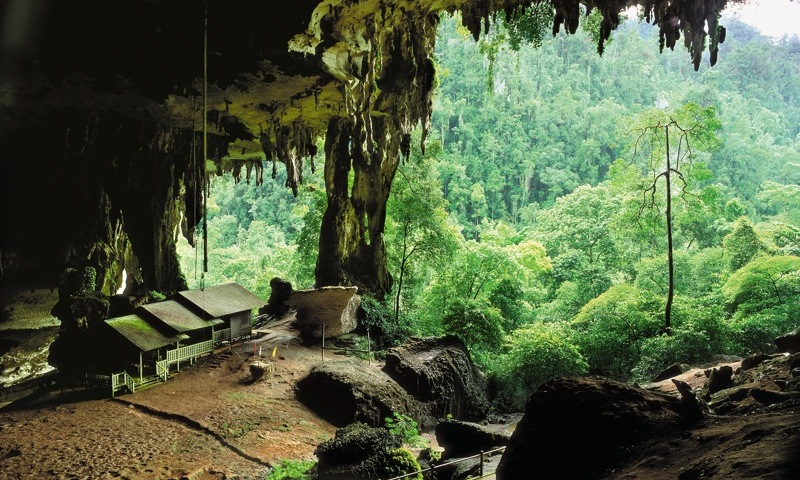 top destinations for honeymoon asia in sarawak niah cave nature beauty in borneo