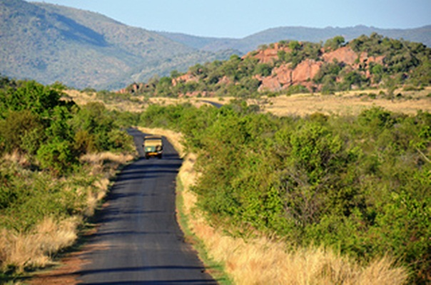 kruger-national-park-safari-vacation-in-south-africa